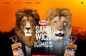 Südafrika Reise Gewinnspiel, Sandwichkings Gewinnspiel